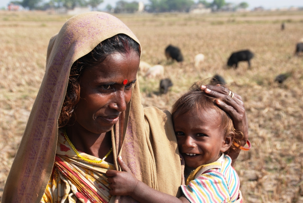 Pig nomads have to carry along all family members