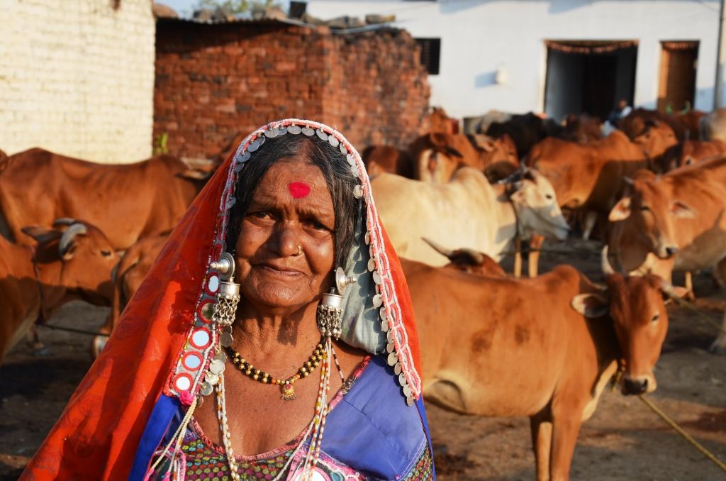 Rajabai Banjara exressed deep concern about the future of her cattle herd.