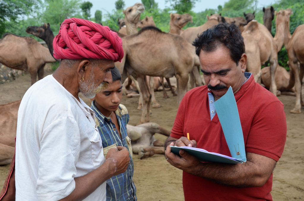 registering-dhungarrams-herd